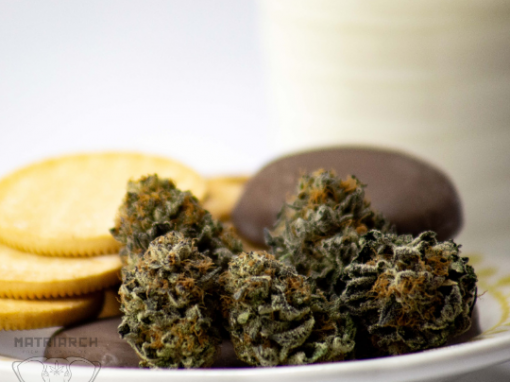 Girl Scout Cookies Matriarch Premium Cannabis